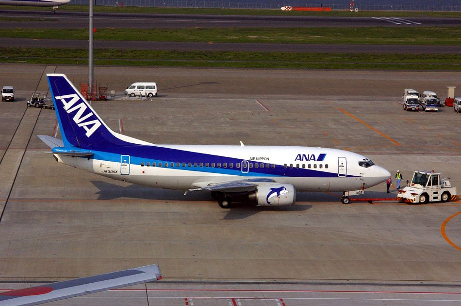 All Nippon Airways grafika