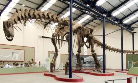 10 największych dinozaurów