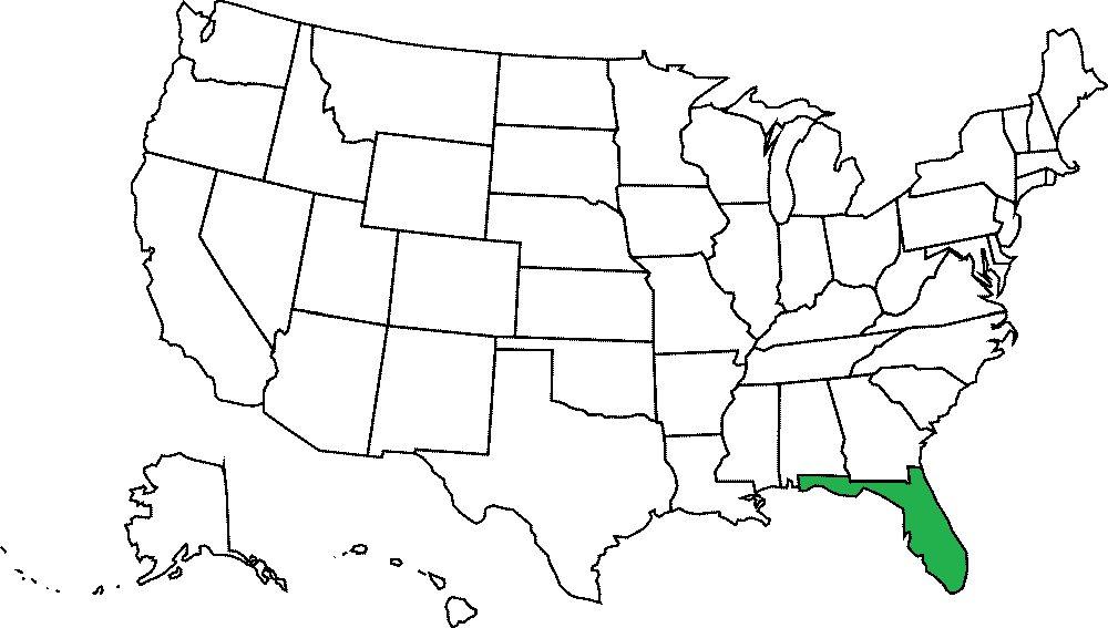 Floryda grafika
