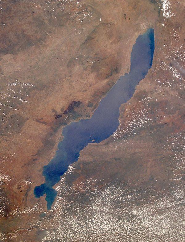 Jezioro Malawi (Niasa) grafika