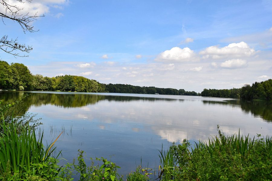 Jezioro Morzycko grafika