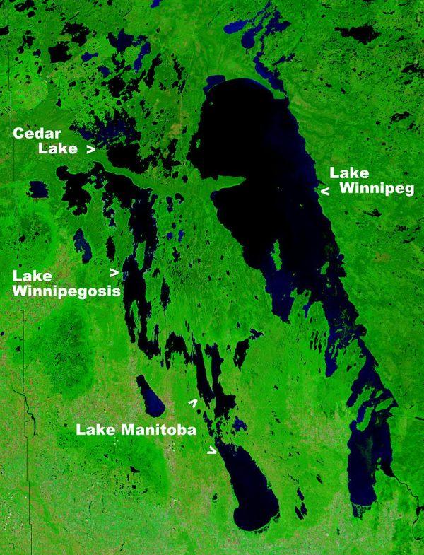 Jezioro Winnipeg grafika
