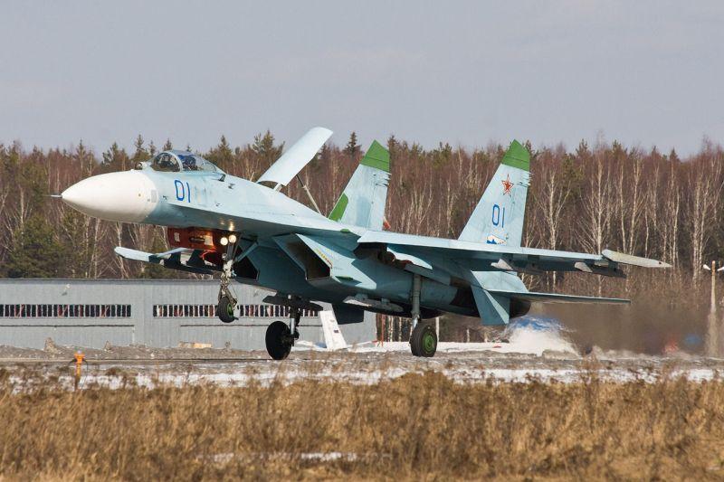 Sukhoi Su-27 grafika